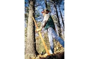 2020 Norwood TimberTool Tree-Felling Jack  Misc