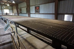 Unknown 80ft 4 Strand  Conveyors Board Dealing