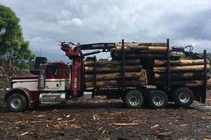 2011 Peterbilt 389  Truck-Log